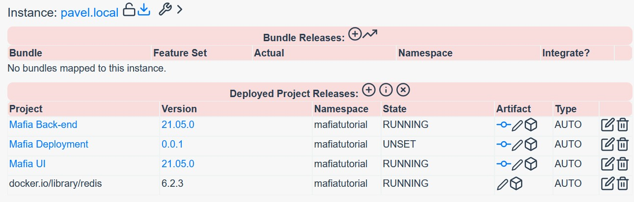 Deployed Docker Images on Instance in Reliza Hub